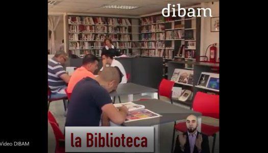 ¿Ya viste el video que hizo la DIBAM sobre nuestro programa? ¡No te lo pierdas!